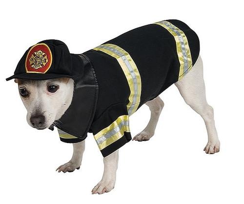 Costume pour Animaux de Pompier