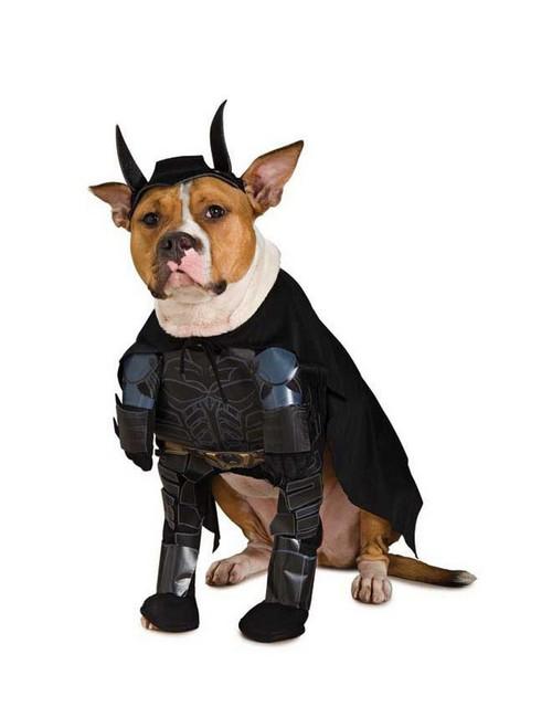 Costume pour Animaux de Batman
