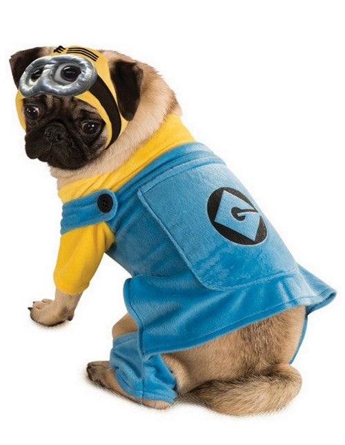 Costume de Minion pour Animal