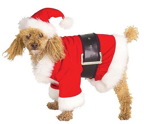 Costume en Velours Du Père Noël pour Chien