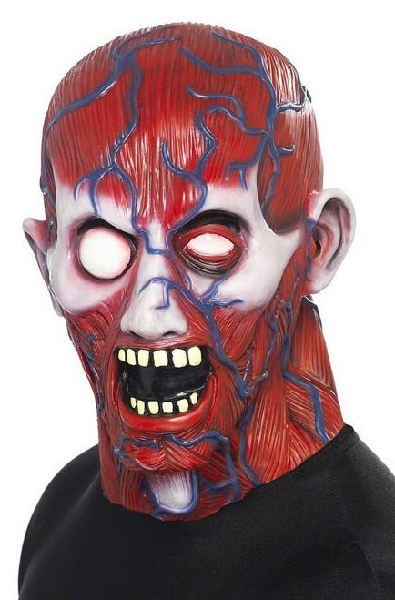 Masque de l'Homme Anatomie