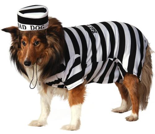 Prisonnier Pet Costume