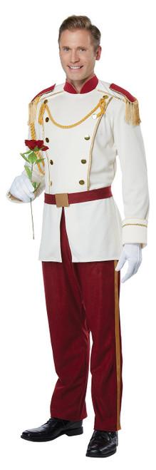 Costume de Prince Charmant de Conte de Fées