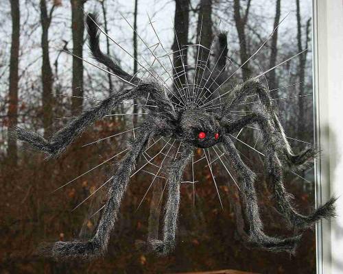 Araignée Brise Vitre Noire de 30 pouces