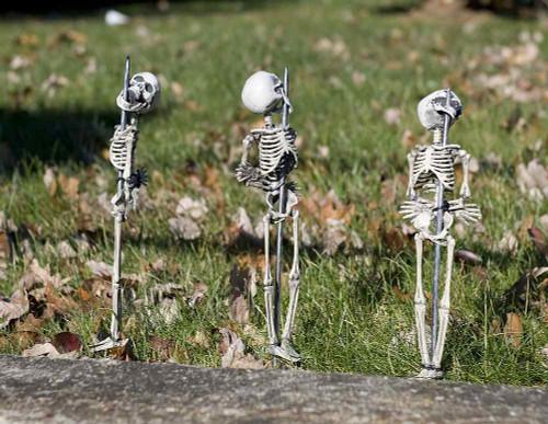 Décoration Squelettes Empalés pour Pelouse de 16 pouces