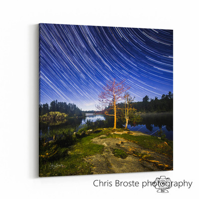 Side view of wall art showing star trails in the night sky above the Boundary Waters