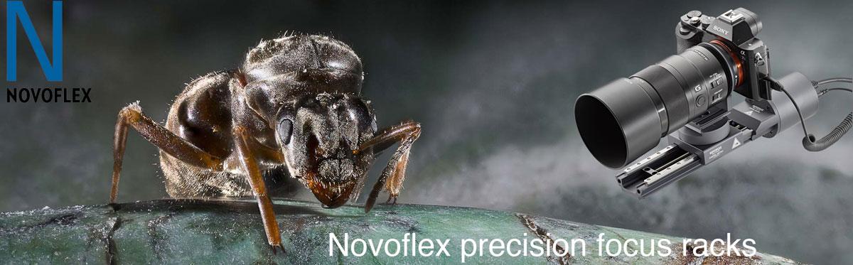 novoflex-macro-bug-1.jpg