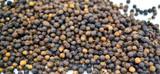 Spices by La Boite- Black Sarawak Peppercorns