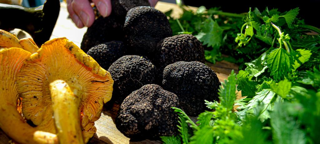 frsh-truffle.jpg