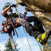 Ascend Seasonal Mid Weight Women's Arborist Chainsaw Trousers