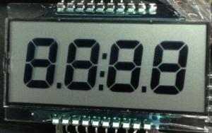 TN Segment LCD