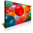 "DynaScan 42"" Commercial Ultra-Bright LCD Display - 2500 NIT"