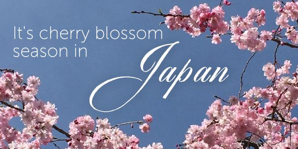 email-banner-chunky-april-2019-japan-combi.jpg