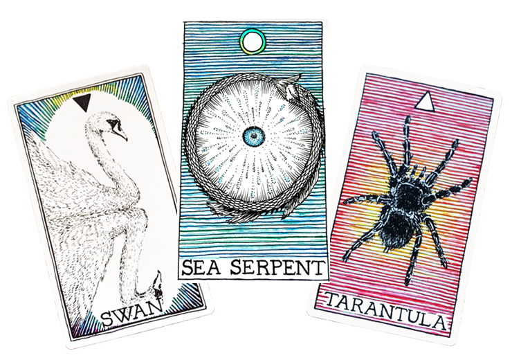 3 Card Tarot Spreads With The Wild Unknown Animal Spirit Deck Earth Magick