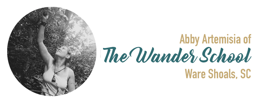 new-the-wander-school-abby-artemisia.png