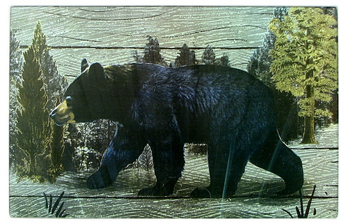Black Bear Scene Cutting Board & Trivet