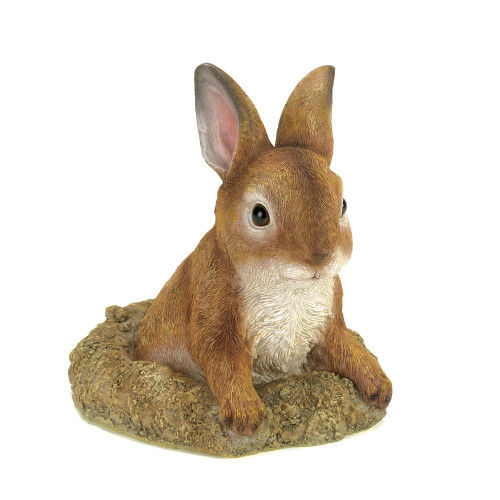 Curious Bunny FIgurine
