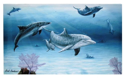 Dolphins Canvas Wall Décor