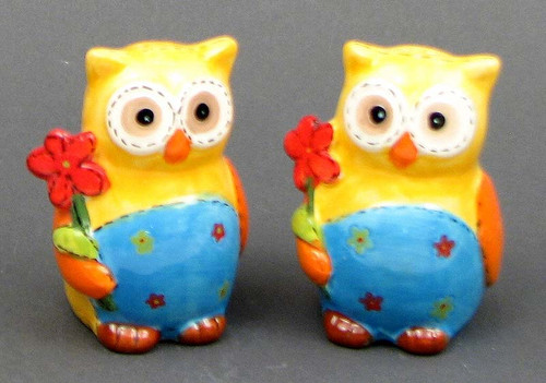 Colorful Owl Salt & Pepper Shakers