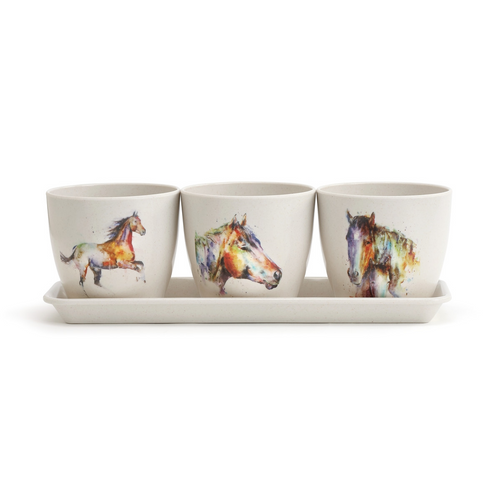Watercolor Horse Planter Set