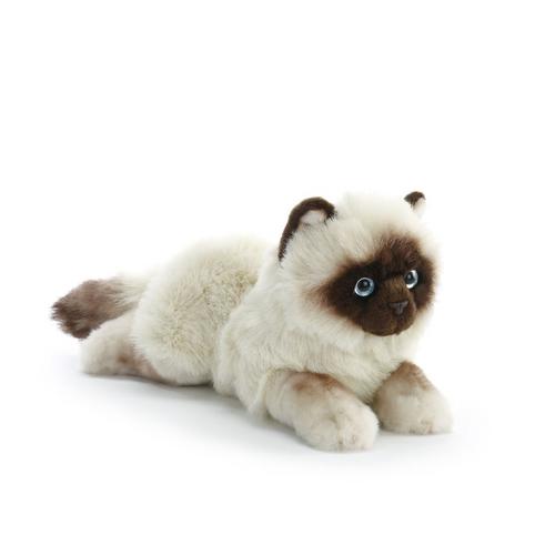 Siamese Cat Plush Toy, Large