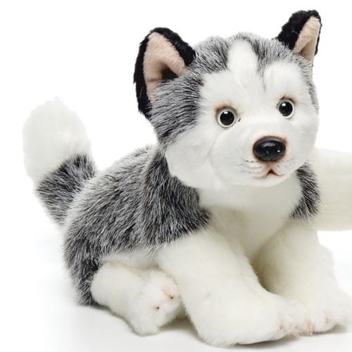 Husky, Black & White Plush Toy