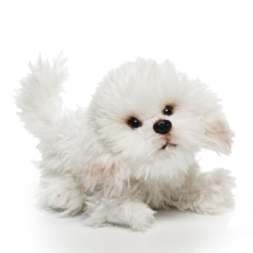 Bichon Frise Plush Toy