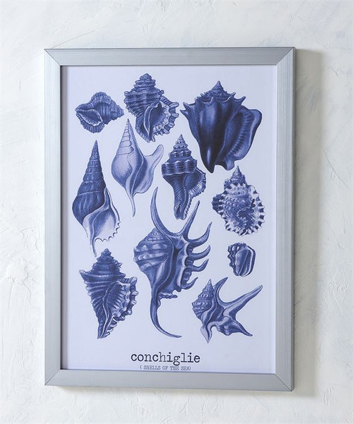 Blue Sea Shells Framed Canvas Print