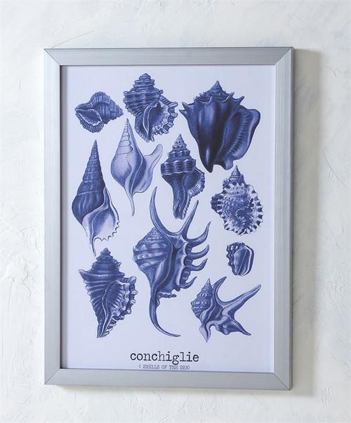 Blue Sea Shells Framed Canvas Print