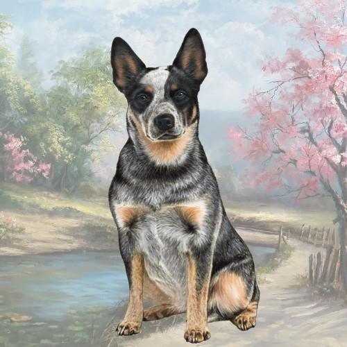 Australian Cattle Dog Stone Coaster