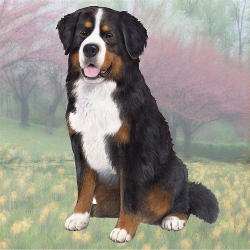 Bernese Mountain Dog Stone Coaster
