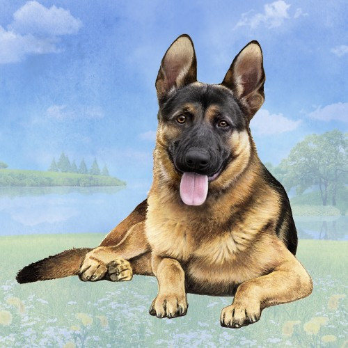 German Shepherd, Black & Tan Stone Coaster