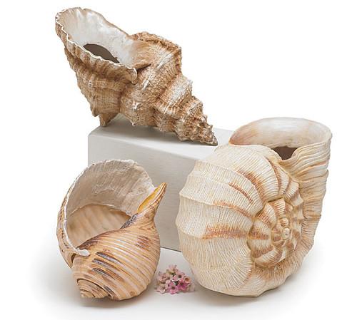 Sea Shell Vase Trio