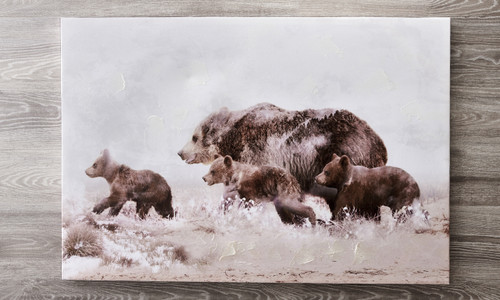 Grizzly Bear Family Framed Canvas Print
