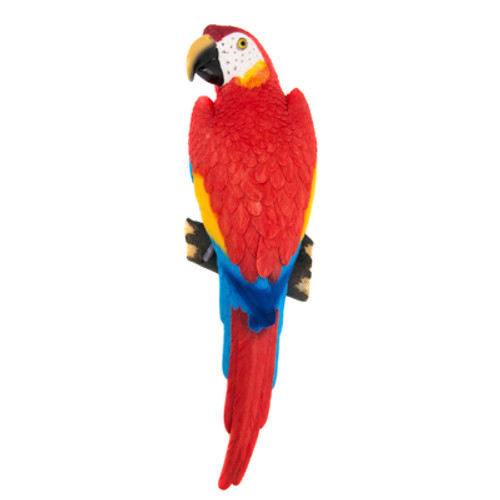 Red Macaw Wall Parrot
