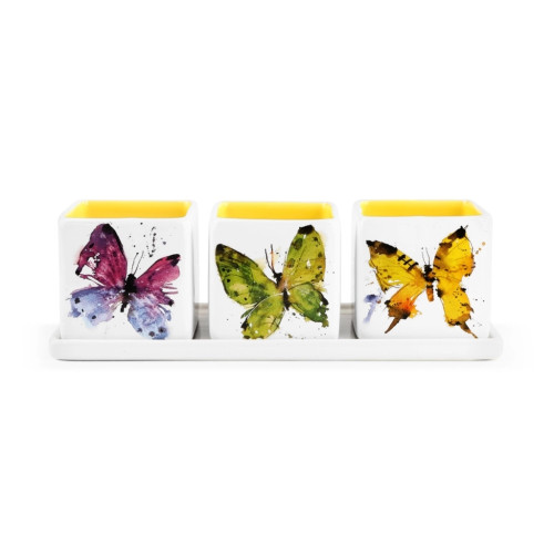 Butterfly Herb Planter Set