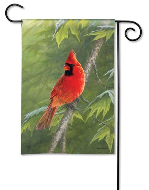 Cardinal On Branch Garden Flag