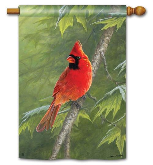 Cardinal on Branch House Flag