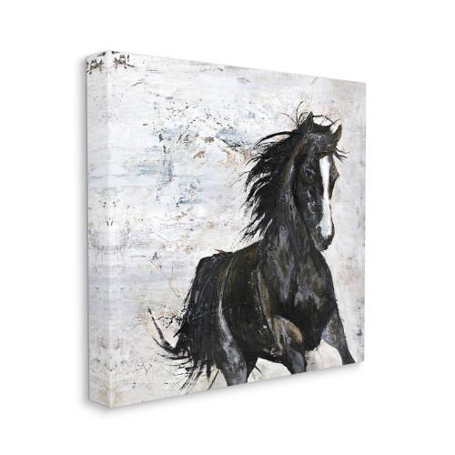 Wild Black Horse Canvas Wall Art