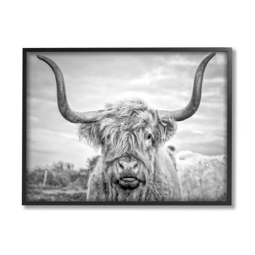 Black & White Highland Bull Framed Art