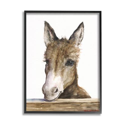 Baby Donkey Framed Art