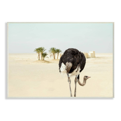 Ostrich In Desert Plaque Art