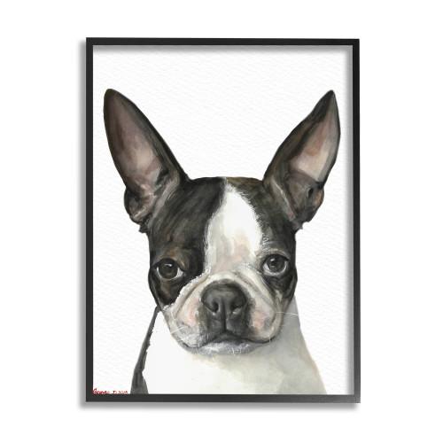 Boston Terrier Framed Art