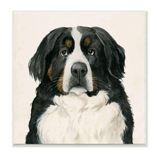 Bernese Mountain Dog Plaque Art
