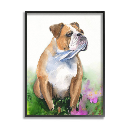 Bulldog Watercolor Framed Art