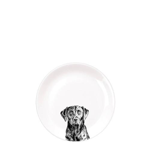 Lab Dinner Plate