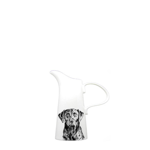 Lab Pitcher, Small
