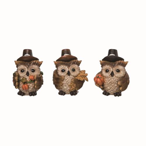 Owl Pilgrim Set