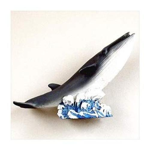Finback Whale Magnet