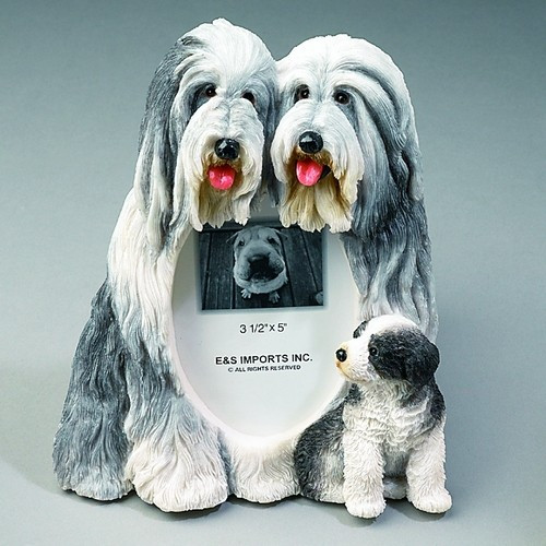 Bearded Collie Small Photo Frame